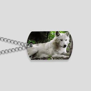 P9200260 Dog Tags