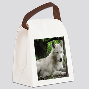 P9200260 Canvas Lunch Bag