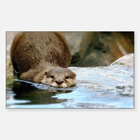 River Otter Sticker (Rectangle)