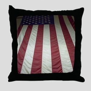 PICT0041 Throw Pillow