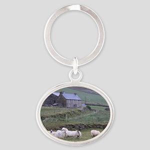 Dingle092009 154 Oval Keychain