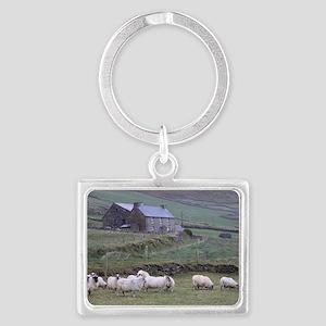 Dingle092009 154 Landscape Keychain