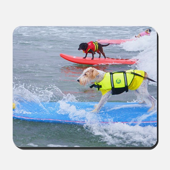 Helen Woodward surf contest Mousepad