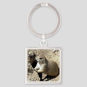 Prairiedog2_calendar Square Keychain
