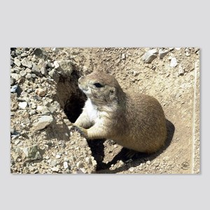 Prairiedog2_mini Postcards (Package of 8)