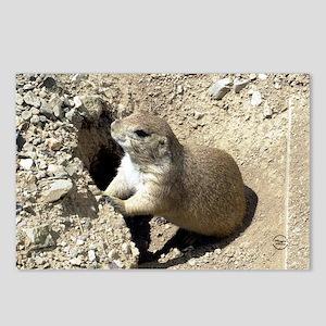 Prairiedog2_sticker Postcards (Package of 8)