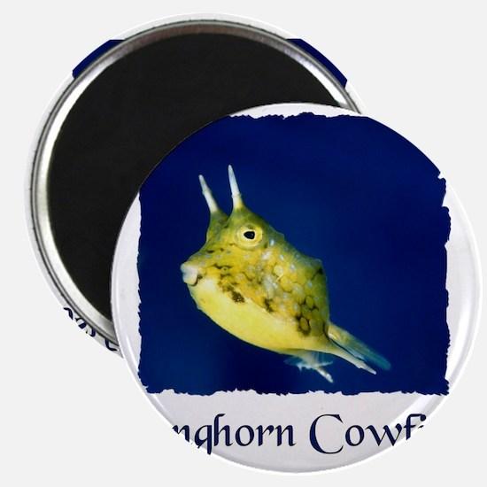 cowfish shirt Magnet