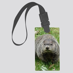 GrH2.34x3.2 Large Luggage Tag