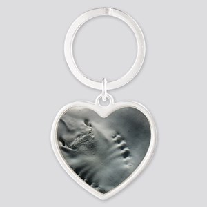 stingray_Lg_framed Heart Keychain