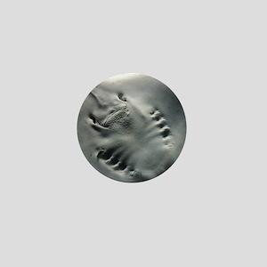 stingray_mpad Mini Button