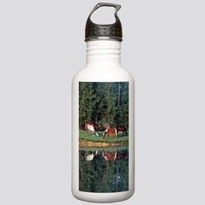 reflection_lgp Stainless Water Bottle 1.0L