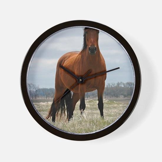 baymare_lgp Wall Clock