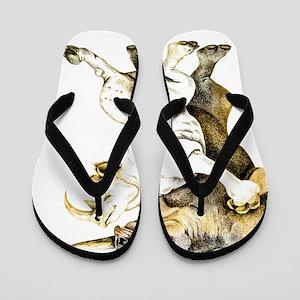 tango-rhino Flip Flops