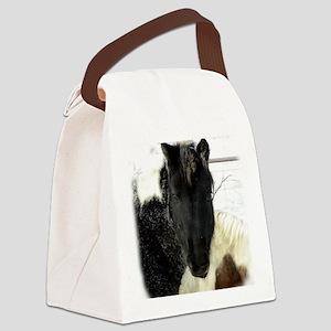 SLS Dec27Feb2510_3357DSCN8384 cop Canvas Lunch Bag