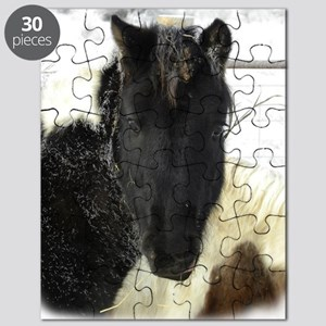 SLS Dec27Feb2510_3357DSCN8384 copy fuzzed Puzzle