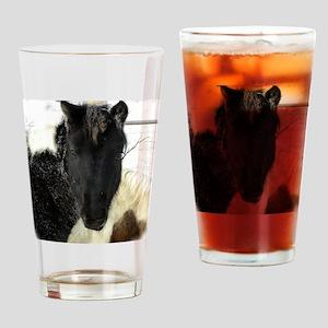 SLS Dec27Feb2510_3357DSCN8384 copy  Drinking Glass