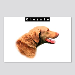 Chessie Head Postcards (Package of 8)