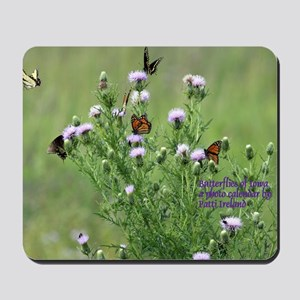 Calendar Cover Butterflies Mousepad