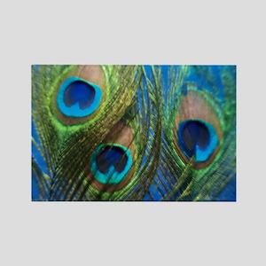 fish eye blue stadium Rectangle Magnet