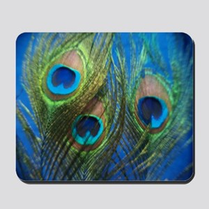 fish eye blue stadium Mousepad