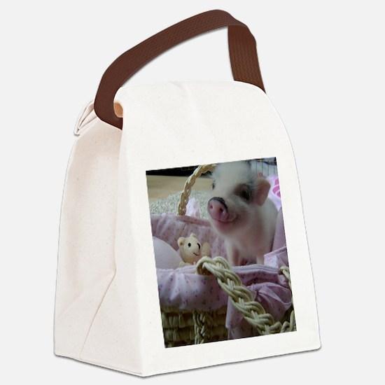 DSC07914 Canvas Lunch Bag