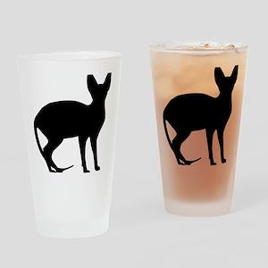 cat_sphynx Drinking Glass