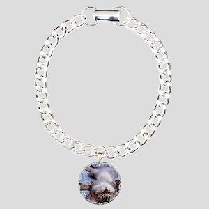 19 Charm Bracelet, One Charm