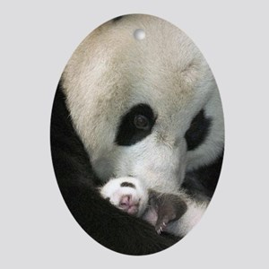 Ma Panda slider Oval Ornament