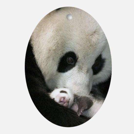 Ma Panda slider Oval Ornament