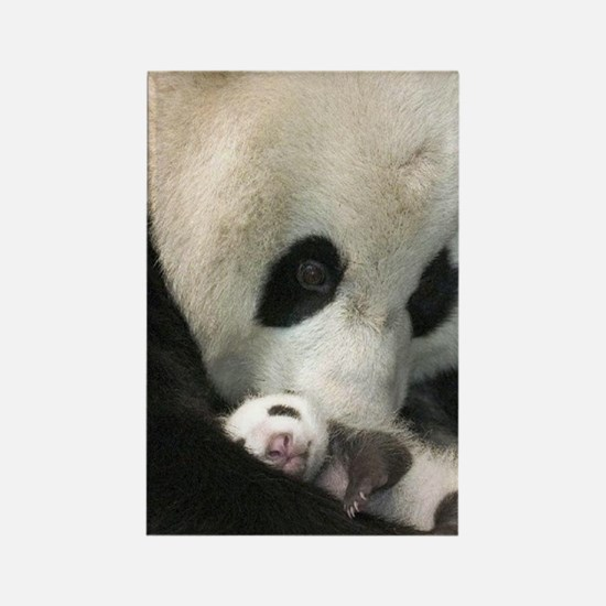 Ma Panda slider Rectangle Magnet