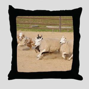 081410c 287 Throw Pillow