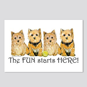 Norwich Terrier Fun Postcards (Package of 8)