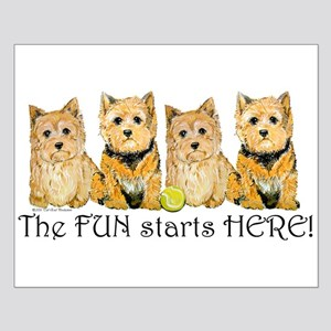 Norwich Terrier Fun Small Poster