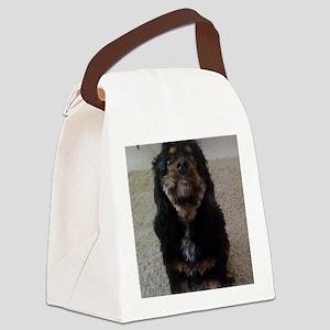 Pets Canvas Lunch Bag
