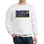 Starry Night Quarterhorse Sweatshirt