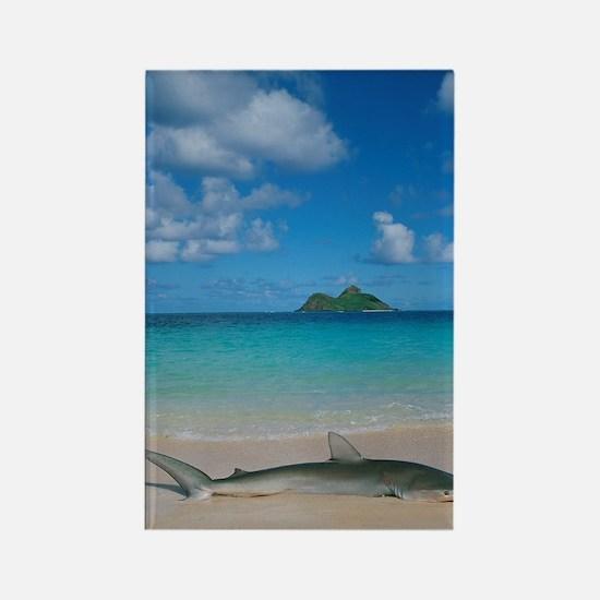 Lanikai Beach, Lanikai, Kailua, O Rectangle Magnet