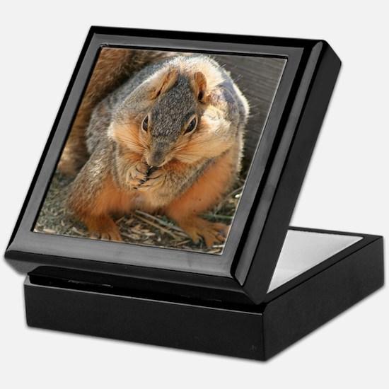 Cheeky Squirrel Keepsake Box