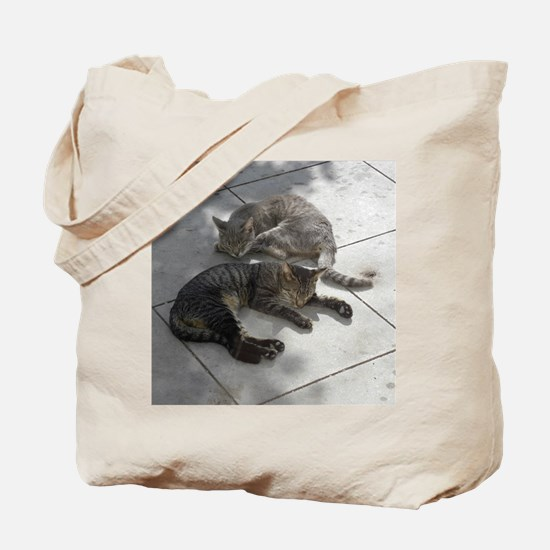 2 Cats Sleeping in Autumn Sunshine 09-22- Tote Bag