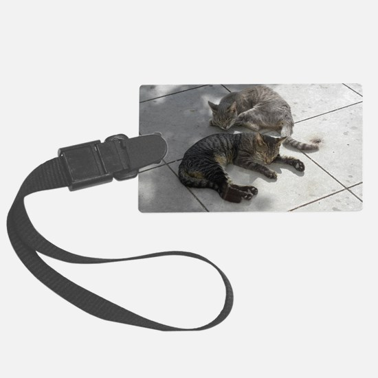 2 Cats Sleeping in Autumn Sunshi Luggage Tag