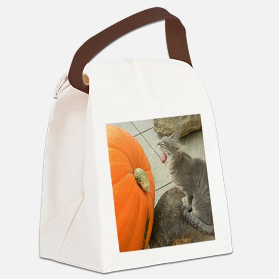 Cat Dreaming of Pumpkin Pie 9-22- Canvas Lunch Bag