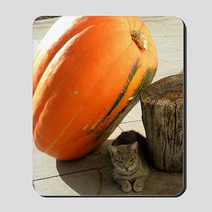 An Overly Confident Cat 9-22-09 DSCN4036 Mousepad