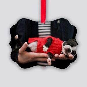 BT Baby POST Picture Ornament
