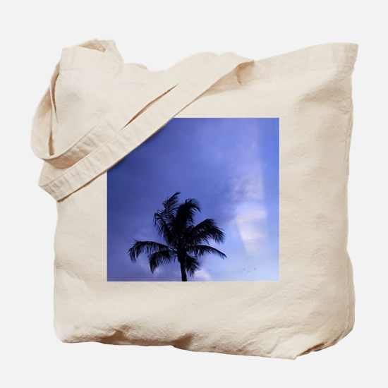 Sunset, Captiva Island, Florida Tote Bag