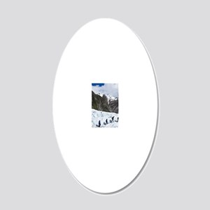 Franz Josef Glacier 20x12 Oval Wall Decal