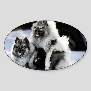 2 January Lexie and Bridget Sticker (Oval)