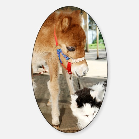 Orphaned Foal - Joy Sticker (Oval)