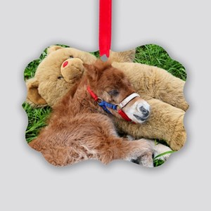 Orphaned Foal - Joy Picture Ornament