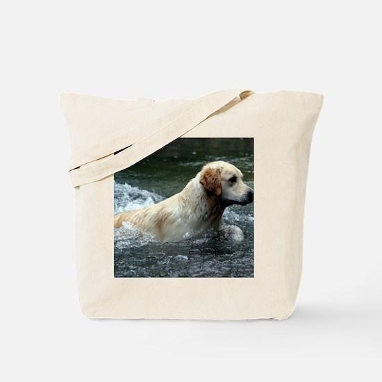 Labradoodle calendar Tote Bag