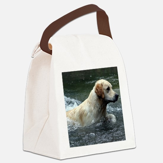 Labradoodle note Canvas Lunch Bag