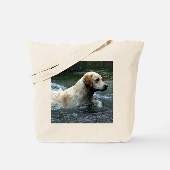 Labradoodle pillow Tote Bag